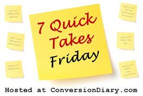 7 Quick Takes Friday